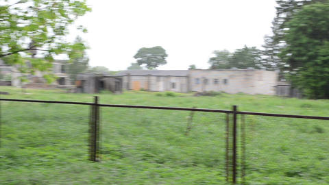 Donkey graze in meadow and woman girl walk near road in rain Footage