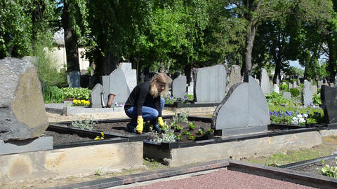 girl daughter plant flowers on father grave in cemetery Footage