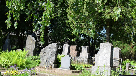 grave tomb stones and trees in rural cemetery Footage