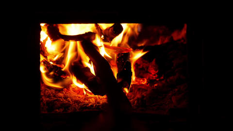 Adding Wood To Fire stock footage