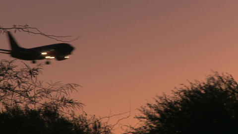Passenger jet flies over tree line Live Action