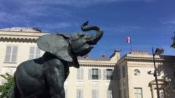 Elephant sculpture in Paris Footage