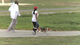 Woman Walking Her Dog in the Park (3 of 3) Live Action