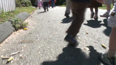Preschool Aged Children Walking Along Path (5 Of 5) stock footage