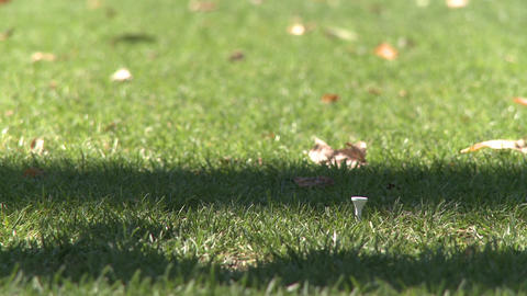 Close up of golfer removing tee Stock Video Footage
