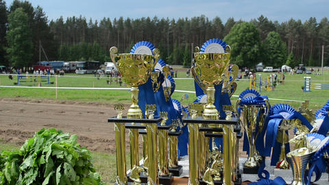 Horse racing cups awards prepared for winners Stock Video Footage