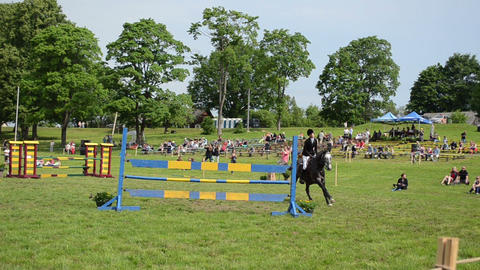 woman rider with horse jump barriers in steeplechase horse race Footage