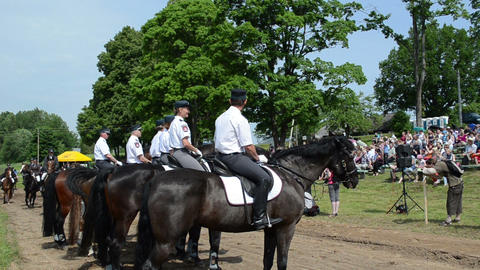 Ranger police riders event in city horse festival and people Stock Video Footage