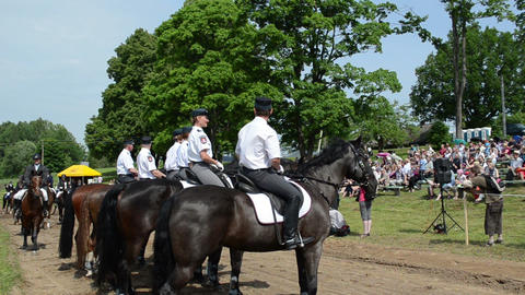 Ranger police riders event in city horse festival and people Footage
