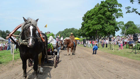Horse in carriage, cowboy and people audience in horse... Stock Video Footage