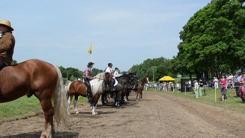 cowboys on horse, police riders and people in public show Stock Video Footage