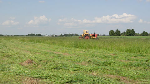tractor cut meadow grass of fine lines Footage