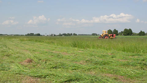 tractor cut meadow grass of fine lines Stock Video Footage