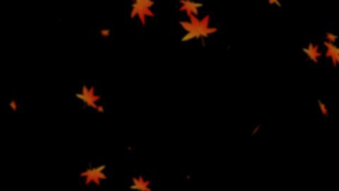Momiji Hubuki + Blur Animation