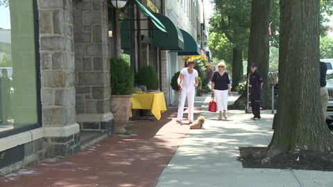 Woman with dog on leash on sidewalk Live Action