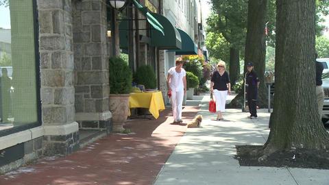 Woman with dog on leash on sidewalk Stock Video Footage
