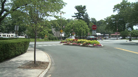 Intersection with flowered median strip Live Action