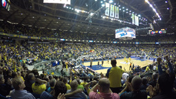 4k Crowd Cheer In Basketball Game stock footage