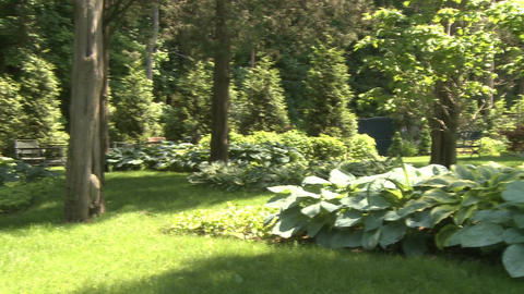 Beautiful meditation garden (2 of 7) Stock Video Footage
