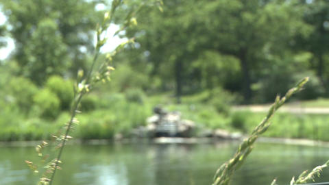 Beautiful view of water (2 of 5) Stock Video Footage
