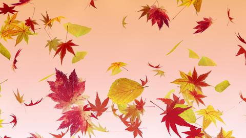 Autumn Leaf tornado Gr 2 4 K Animation
