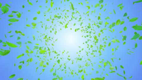 Green Leaf front Bbb 4 K Animation