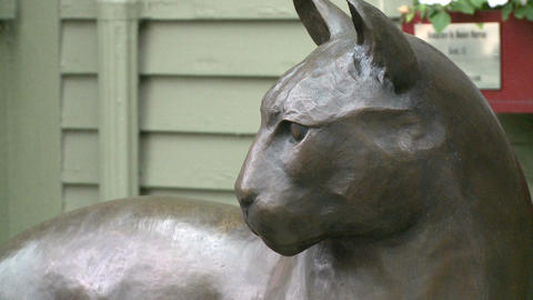 Statue of a Mountain Lion outside a store Footage
