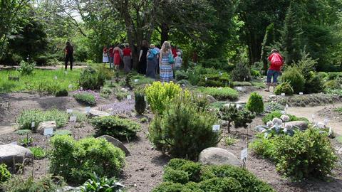 People walk between various species plants with names in garden Footage