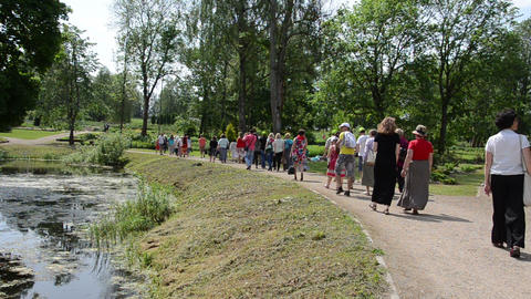 Group of tourists walk in botanical garden near pond in summer Footage