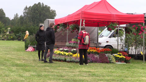 People buy flowers and plants in botanical festival fair Footage