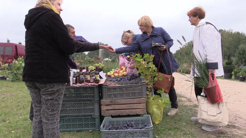 people buy apple, plum, nut and other natural food from farmer Footage