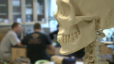 Skeleton in Science class with middle students in the back ground (1 of 2) Footage