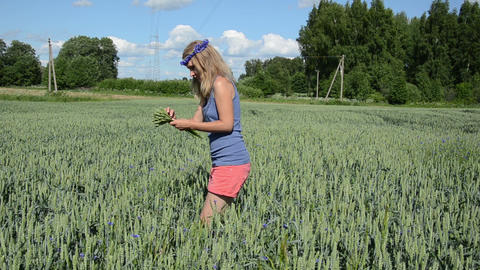 Panorama of cute girl in pink shorts pick wheat ears in field Footage