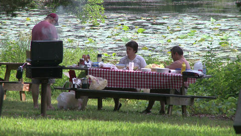 People picnicking at a State Park. (1 of 4) Footage