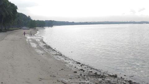 Beach 001 stock footage