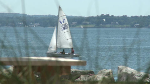 Sailboats on the bay (1 of 8) Footage
