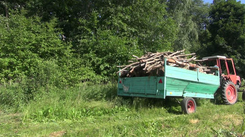 Tractor with trailer fully loaded with tree firewood logs Footage