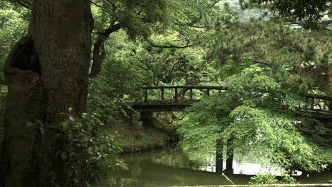 Japanese garden in Sankeien Footage