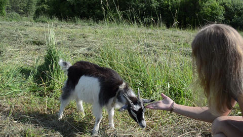 girl sits in meadow goatling scratch snout Footage