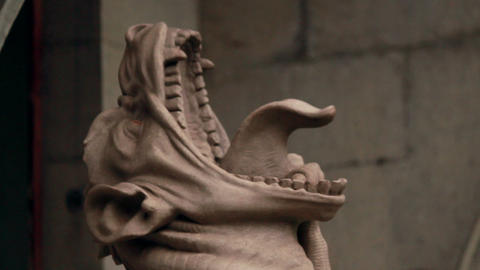 Gargoyle statue Stock Video Footage