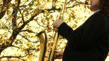 man play on golden saxophone in nature instrumental blow jazz instrument Footage