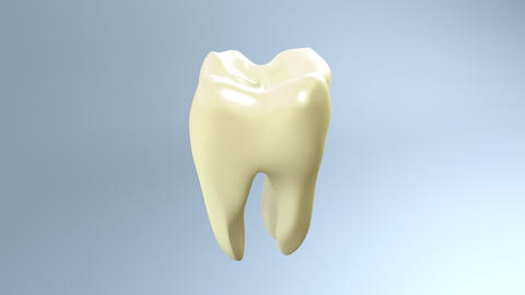tooth step be white Animation