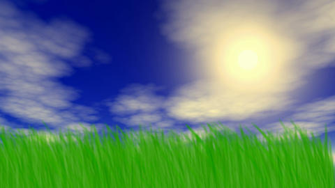 Summer field Animation