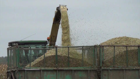 Follow closeup of combine harvester load harvested corn to truck Footage