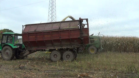 maize field works harvester cut pour grain into tractor trailer Footage