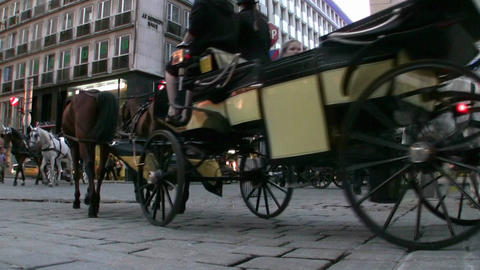 Horse Carriages Vienna Austria stock footage
