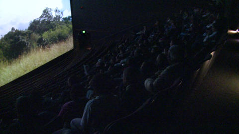 Crowds enjoying a nature documentary (4 of 6) Live Action