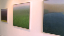 Paintings on an exhibit wall Footage
