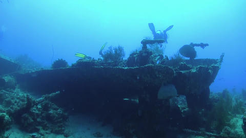 Group of Divers Swims over Ship Wreck Footage