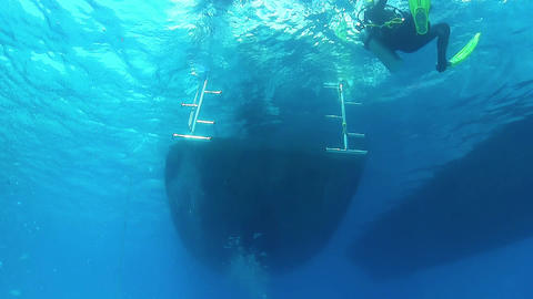 Divers Come Out on Boat After Diving Footage